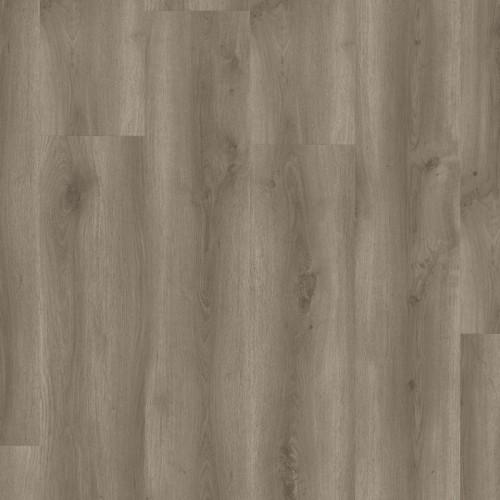 STARFLOOR CLICK 55 i 55 PLUS - Contemporary Oak BROWN
