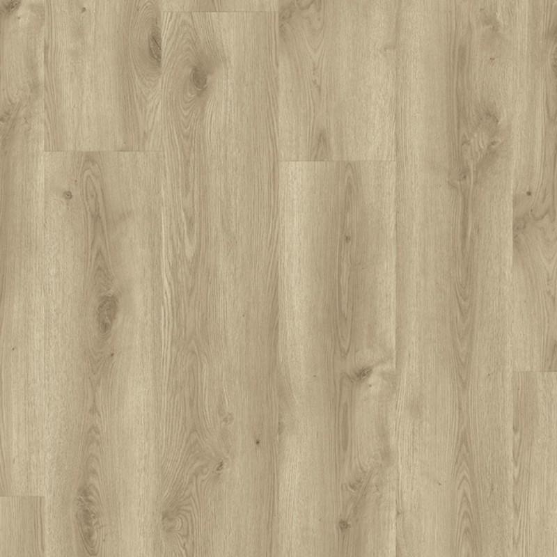 STARFLOOR CLICK 55 i 55 PLUS - Contemporary Oak NATURAL